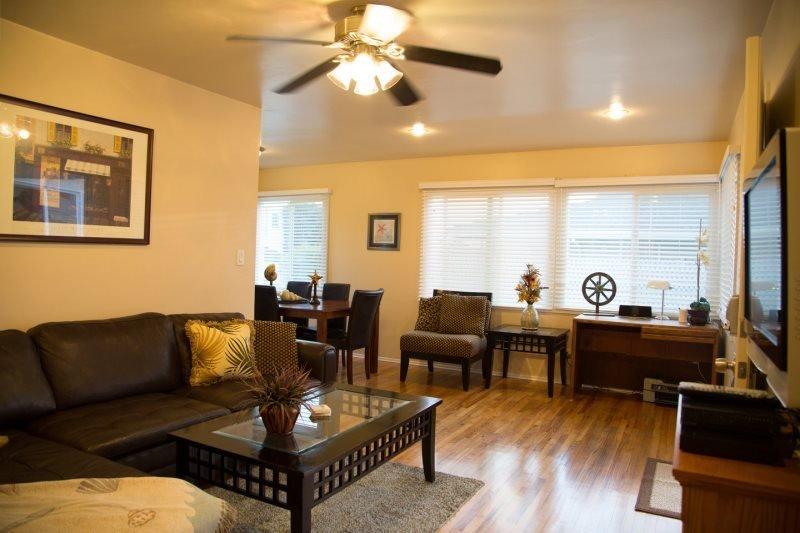 Open living room and plentiful daylight