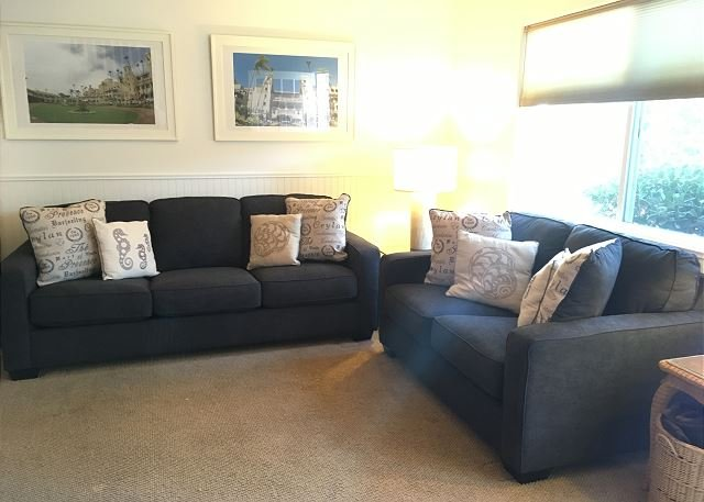 New Comfy Couches - 1/2018