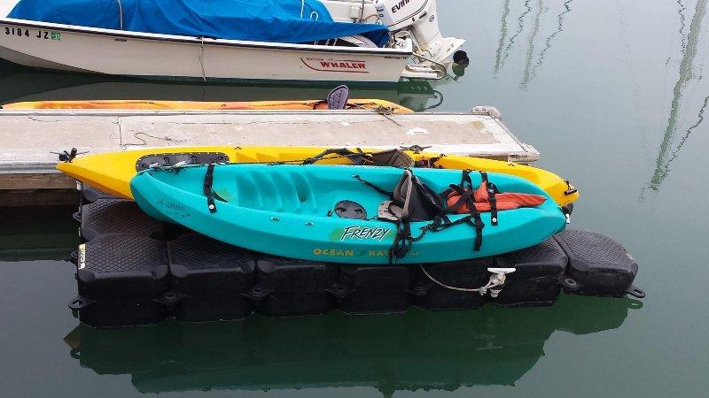 Deux kayaks sont fournis, commodément amarrés au port de Dana Point!