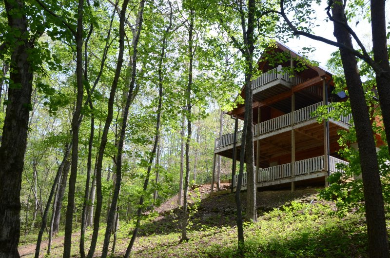 Surrounded by nature, our cabin is a peaceful retreat.