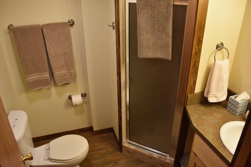 Lower Floor Bathroom w / Custom built-ins