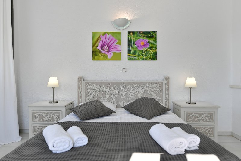 Studio Double Sea View, holiday rental in Naoussa