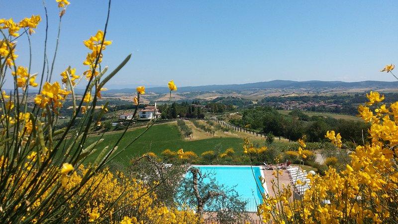 Vacanze in appartamento con piscina in Toscana Siena, vacation rental in Bollano