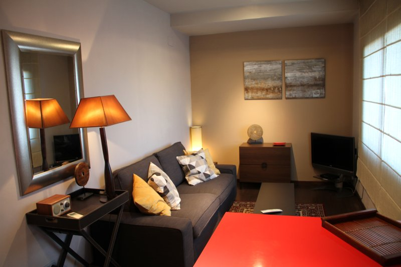 Apartment Top Ramblas - Wi-Fi 100 Mbps, vacation rental in Rubi
