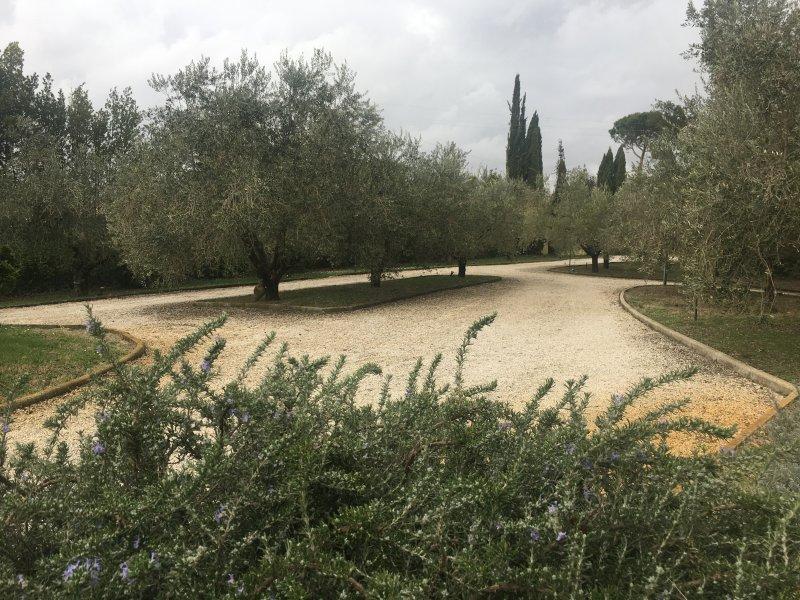 Roma-Cassia deliziosi appartamenti indipendenti in villa, holiday rental in Campagnano di Roma