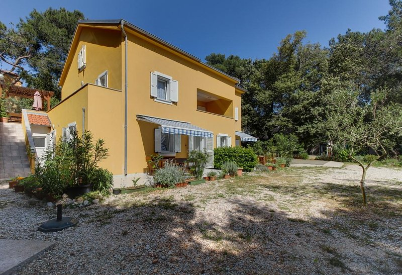 One bedroom apartment Artatore, Lošinj (A-8022-b), vakantiewoning in Susak