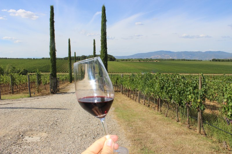 Tour de dégustation de vin