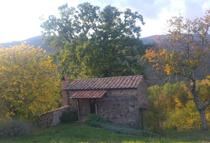 Casa Ciliegi, holiday rental in Roccalbegna