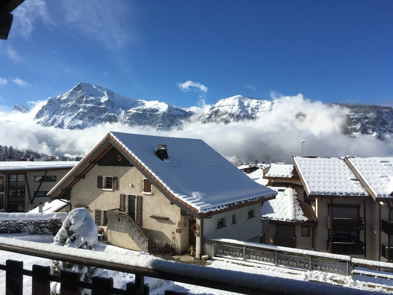 Apartment Le Vernay, fabulous views, FREE wifi, holiday rental in Grand Massif