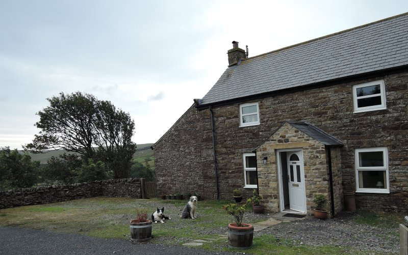 Sunrise Cottage - delightful old cottage with garden and sauna, holiday rental in Garrigill