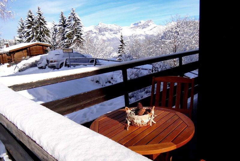 Le balcon avec la vue sur la chaîne des FIZ