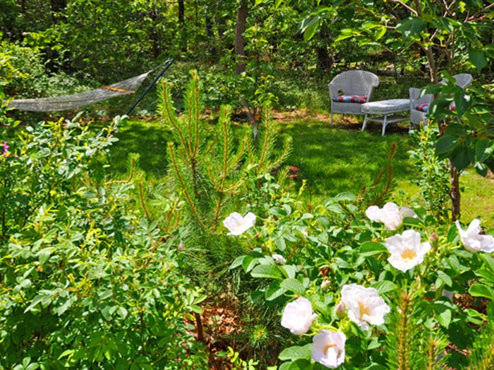 outdoor relaxing, Cottage Guest House.