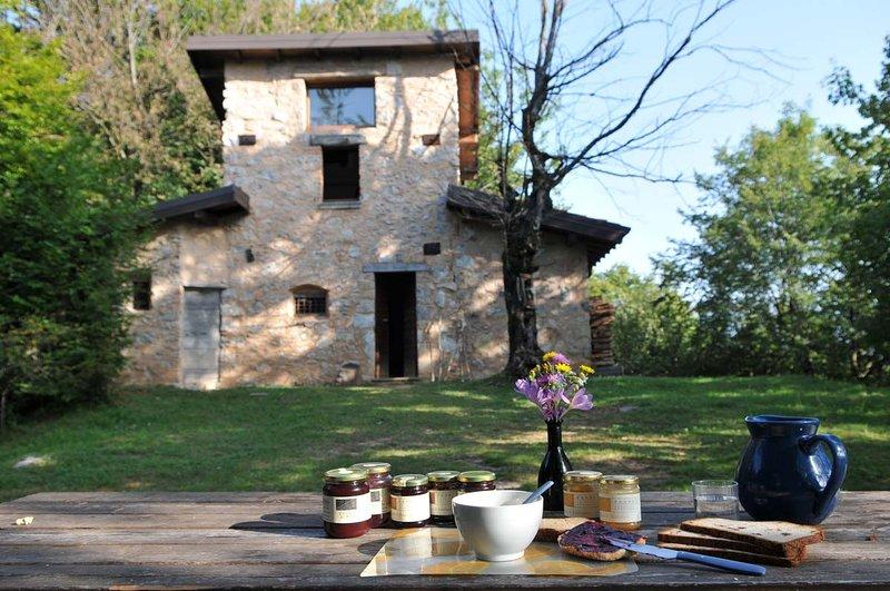 Antica Casa nel Bosco Il Roccolino, vacation rental in Tavernole sul Mella