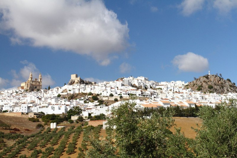 The pretty white village of Olvera, 25 km away, with its beautiful hilltop church and castle
