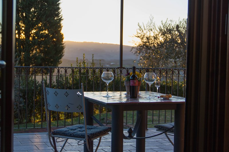 BEST VIEW in SAN GIMIGNANO CITY Tuscany Sunny 1 bedroom PODERE MAGIONE FARM HOU, holiday rental in San Gimignano