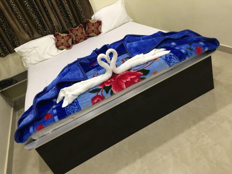 HOTEL HARSH INN EXECUTIVE ROOM 1, holiday rental in Balangir District