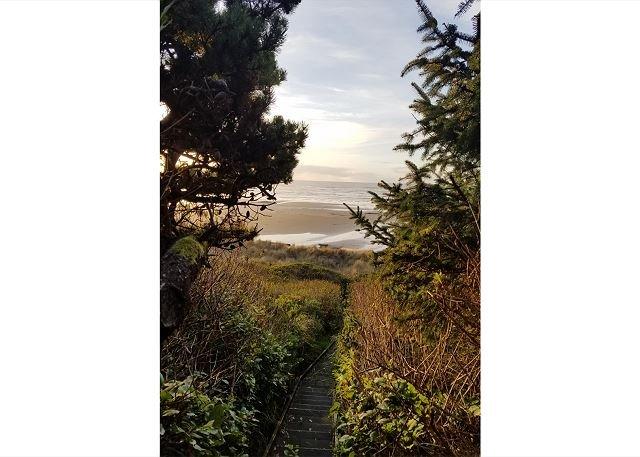 path near the home