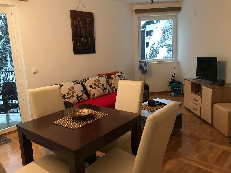 Sunny, cozy app with terrace in center, holiday rental in Cajetina