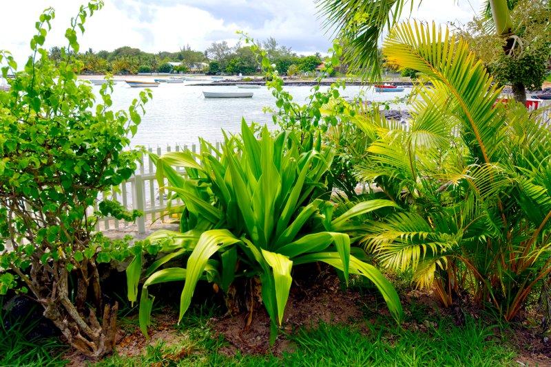 Villa Ashwin - garden and view to the sea