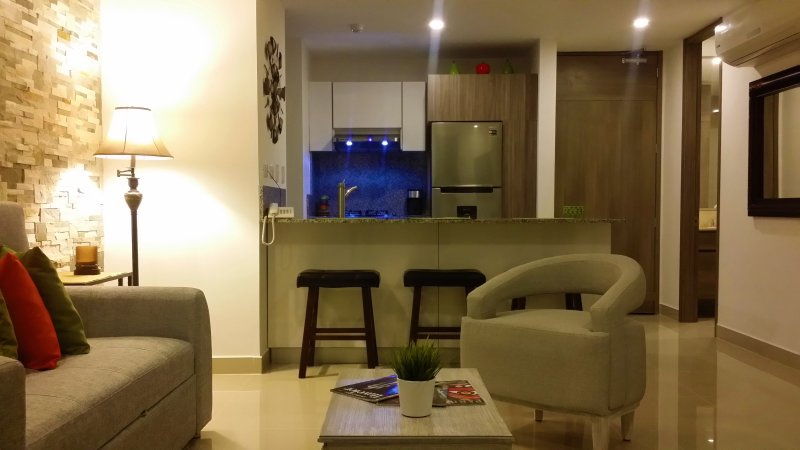 Living room and kitchen view
