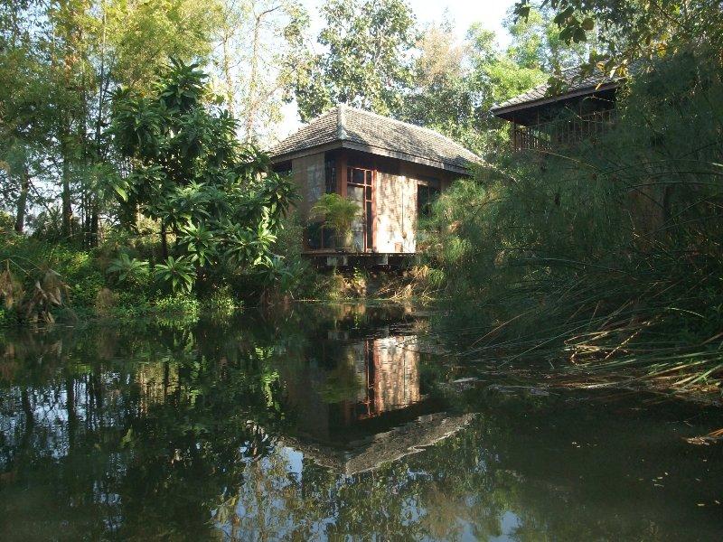 Dillenia Bungalow, garden view