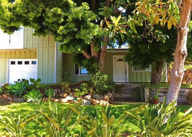 Lush frontage and yard