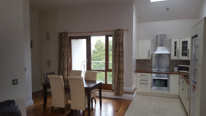2 Bedroom apartment on bridge over river Moy. Ideal for fishermen and family., holiday rental in Swinford