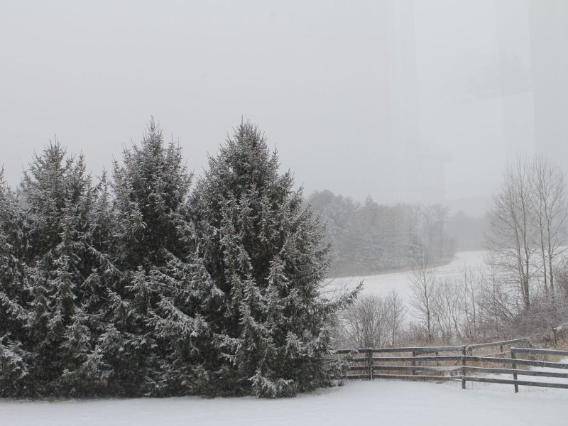 Winter Wonderland View - Over 100+ acres to explore