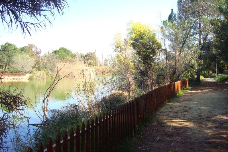 Athalassa Forest Park - Lake and Walking Jogging path.