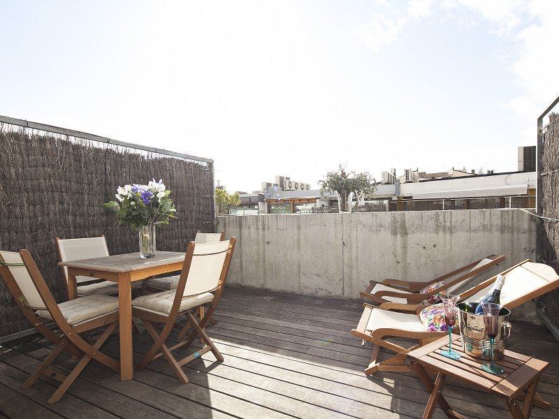 Stylish penthouse with large terrace in Barcelona, vacation rental in Vallmanya