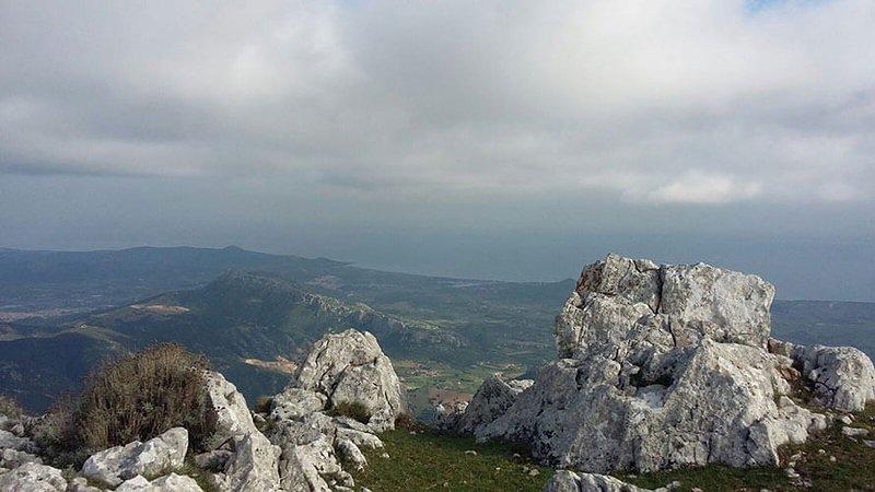 Foto dimostrativa della zona - Monte Montalbo