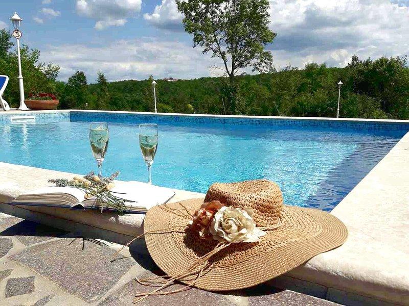 Grožnjan amazing stone Villa Anna, heated pool for groups & families free Wifi, alquiler de vacaciones en Groznjan