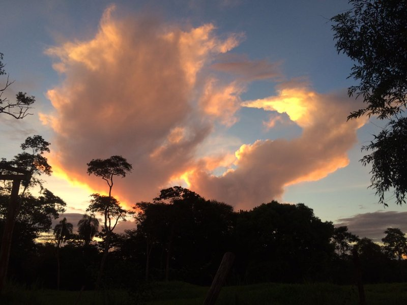 Native Sunset