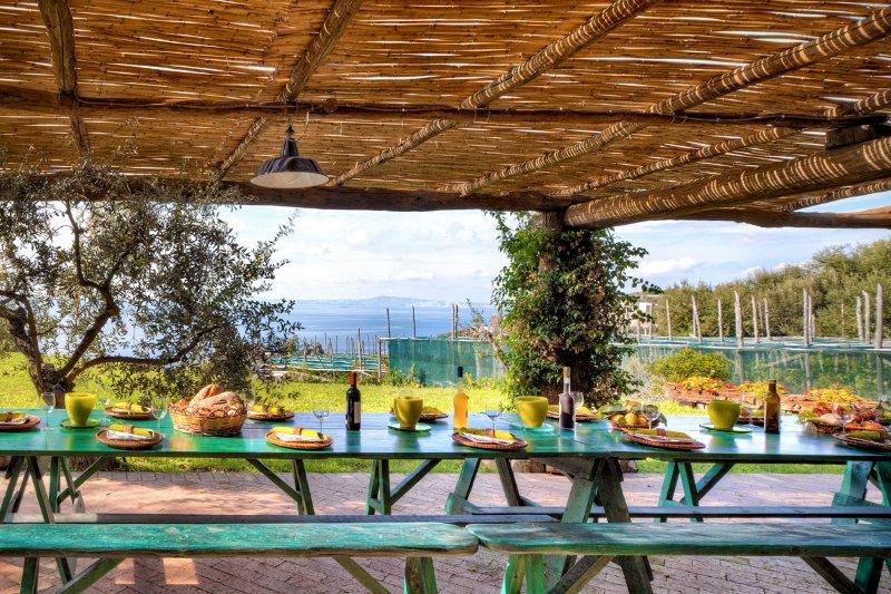 Marina del Cantone Villa Sleeps 13 with Pool - 5573672, vacation rental in Termini
