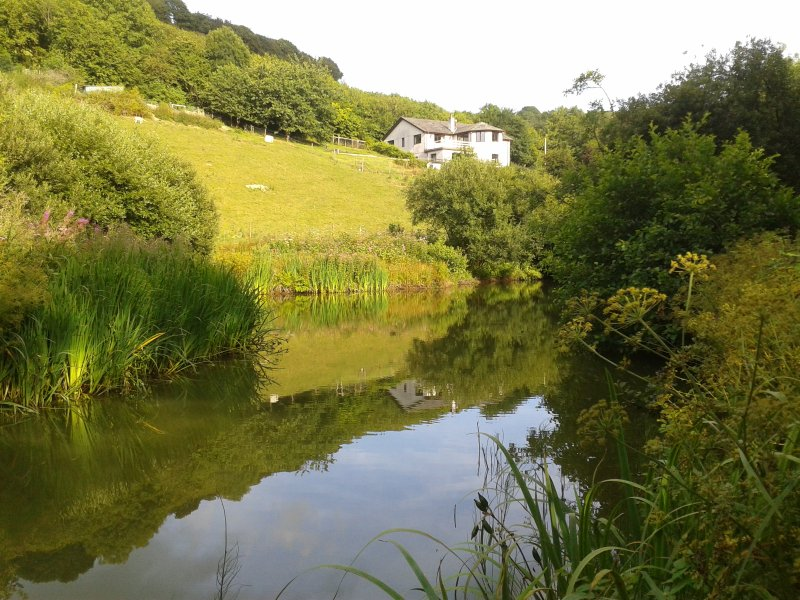 Riverview Farm overlooking our lake & East Looe River