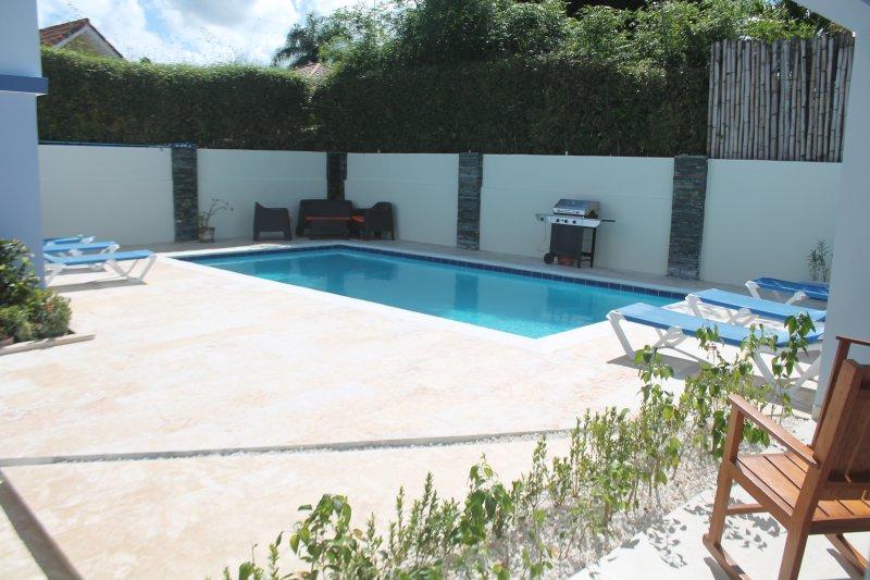 La zona de la piscina con tumbonas y barbacoa.
