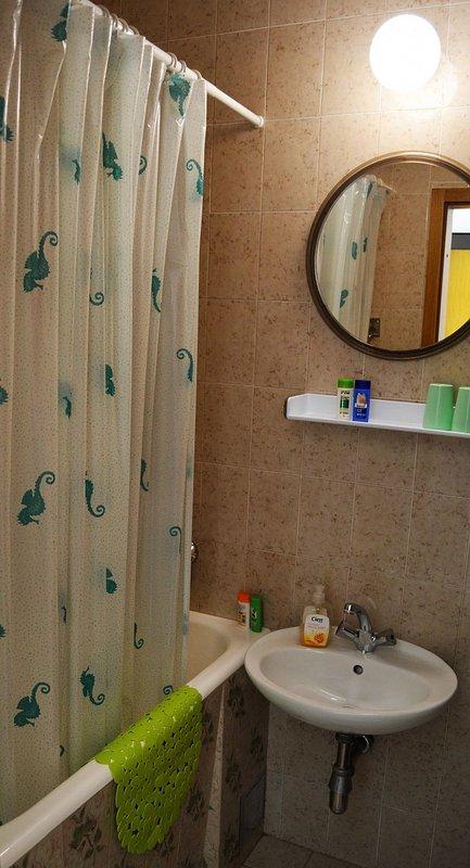 A1 Franka 1 (2): bagno con wc