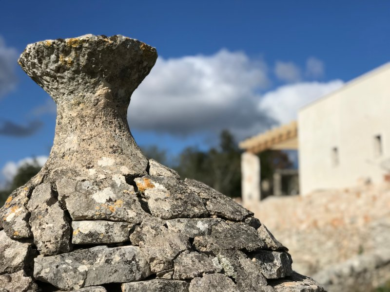 Wander down through the Olive grove to the 400 yr old trullo ruin, step inside & feel time slow down
