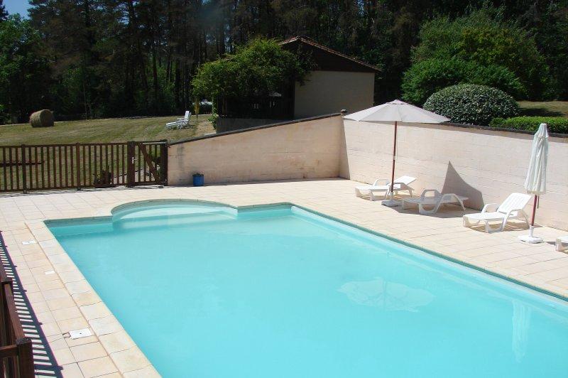 Gite des Grands Chemins Bas, vacation rental in Aubas