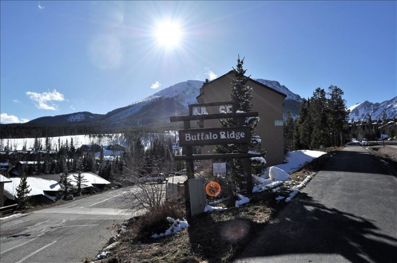 Buffalo Ridge 2 bed Loft, location de vacances à Silverthorne