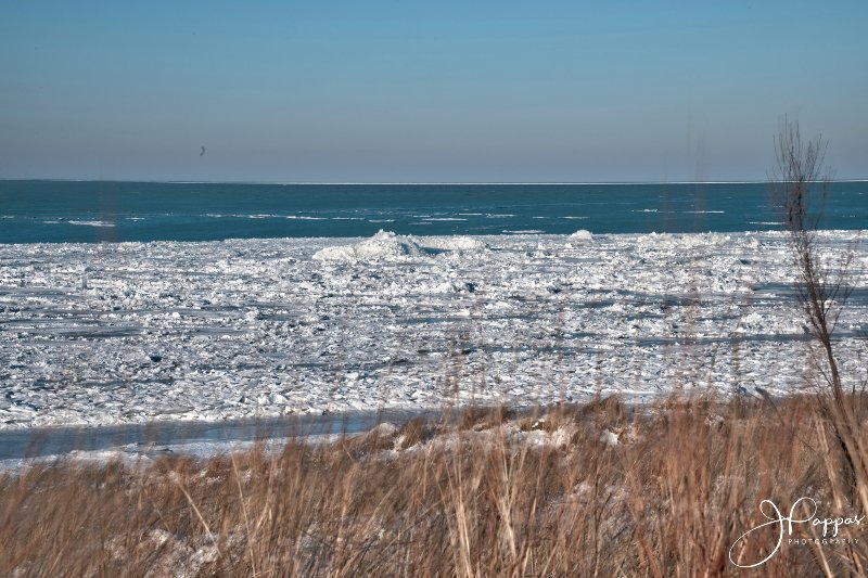 Hermosas vistas de Indiana Dunes National Lakeshore, votada como una de las playas más bellas por National Geographic.