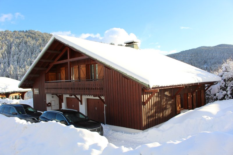 Chalet l'EDELWEISS, vacation rental in Les Gets