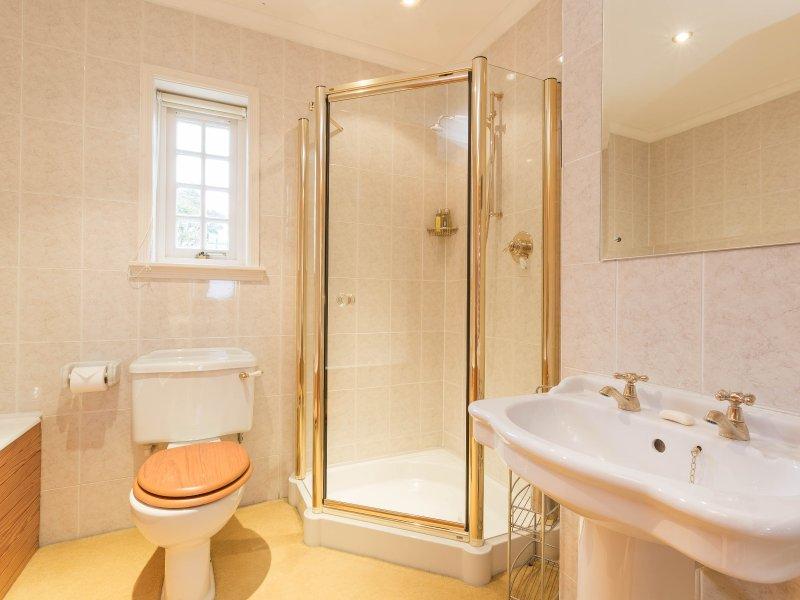Master bathroom shower & full size bath