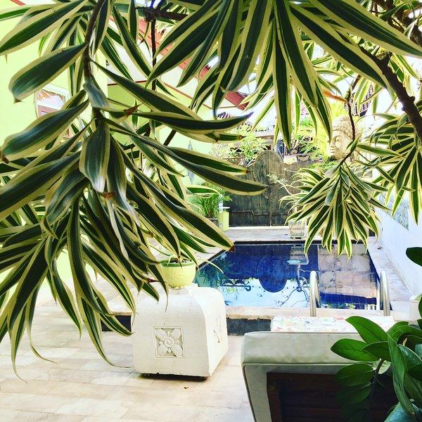 Vue sur la piscine à 2 transats de chambre en plein air, des chaises pour 4, table, ventilateur de plafond, distributeur d'eau, chaîne hi-fi