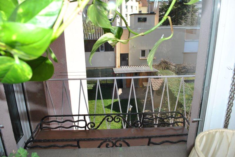 Ver patio lateral y el jardín