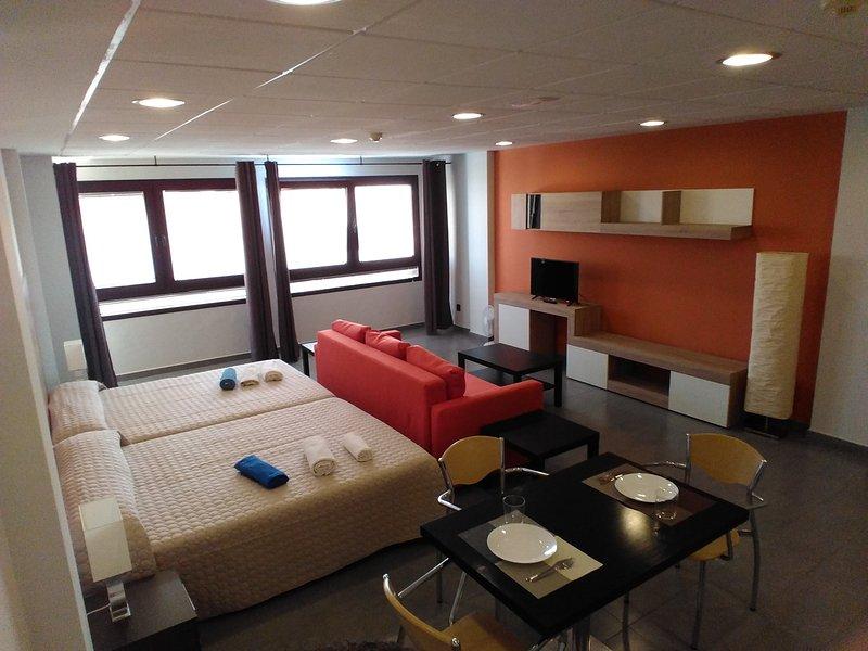 2C STUDIO LOFT 2C, holiday rental in Puerto del Rosario