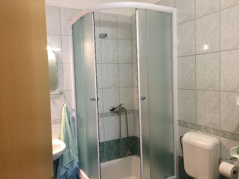 A1 jug(4+1): bathroom with toilet