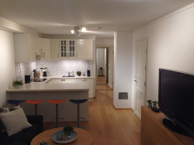 Cozy basement apartment near central Oslo, holiday rental in Lillestrom
