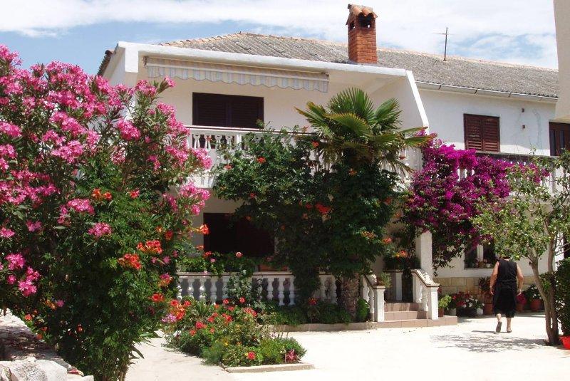 Two bedroom apartment Povljana, Pag (A-228-a), vacation rental in Povljana