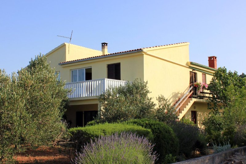 Two bedroom apartment Zaglav, Dugi otok (A-878-a), holiday rental in Luka